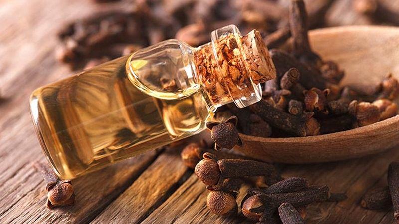 Dầu đinh hương có tác dụng giảm ê buốt rất hiệu quả