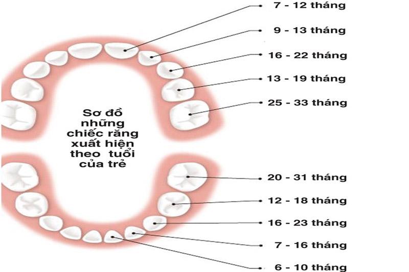 Quá trình mọc răng thông thường ở trẻ