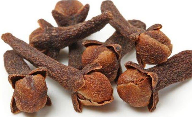 Đinh hương là thành phần chính của nhiều bài thuốc trị hôi miệng.