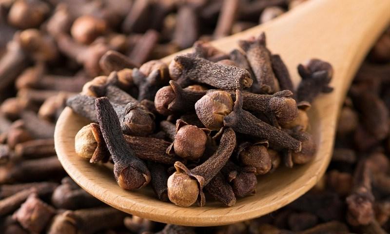 Đinh hương là một trong những loại thảo dược điều trị những bệnh lý về răng miệng