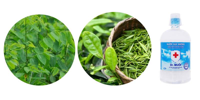 Chữa nấm miệng với trà xanh, nước muối và rau ngót mang lại hiệu quả tốt
