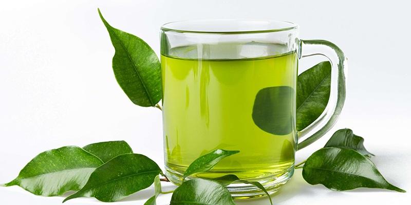 Bài thuốc chữa đau răng bằng lá trà xanh được rất nhiều người áp dụng