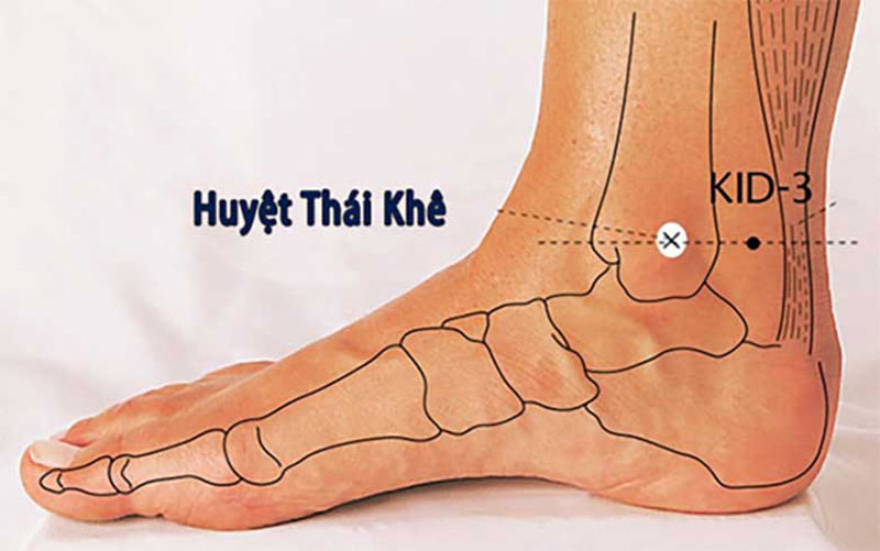 Hình ảnh vị trí huyệt Thái Khê