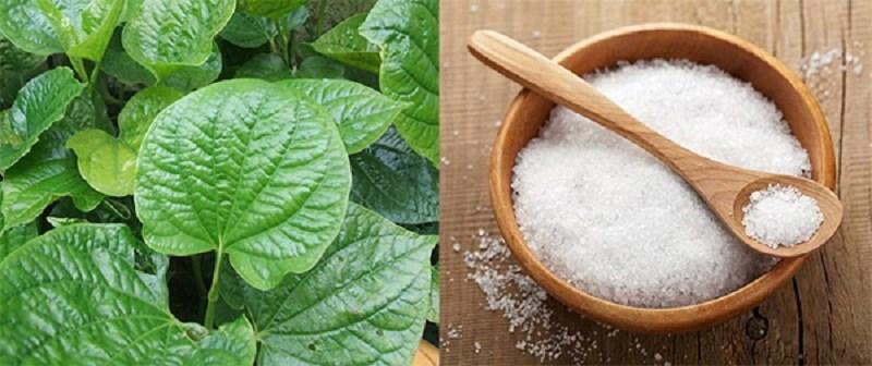 Nên rửa sạch lá lốt với muối trước khi sử dụng