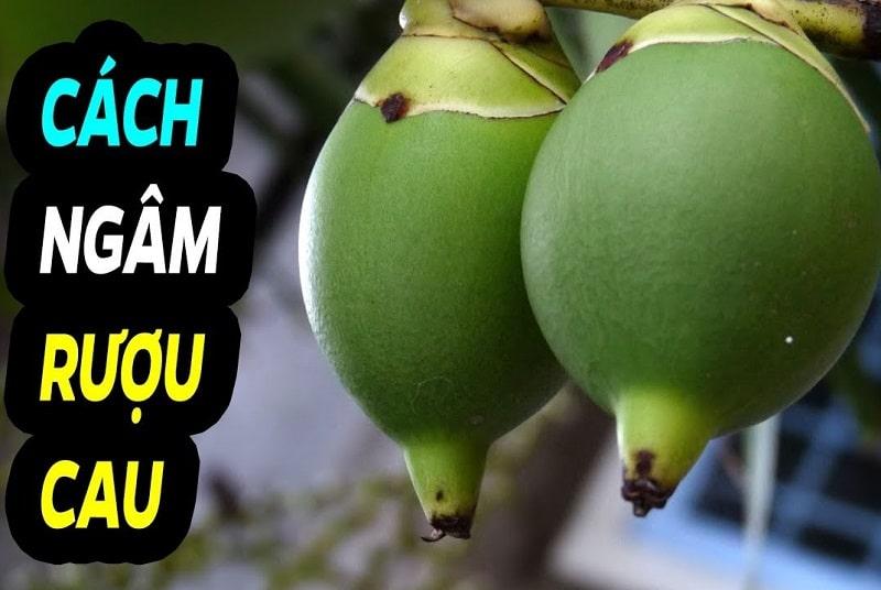 Bạn có thể dùng hạt cau tươi hoặc hạt cau khô ngâm rượu chữa bệnh