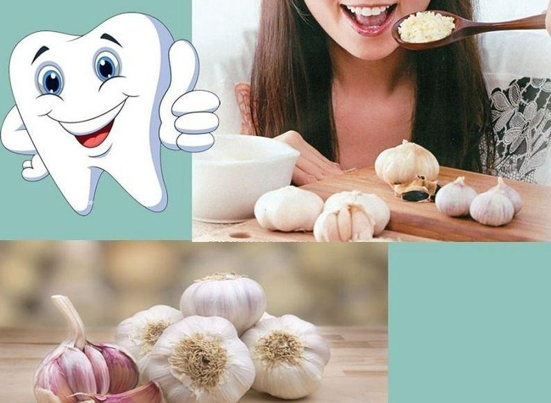 Tỏi mang đến công dụng giảm đau răng hiệu quả
